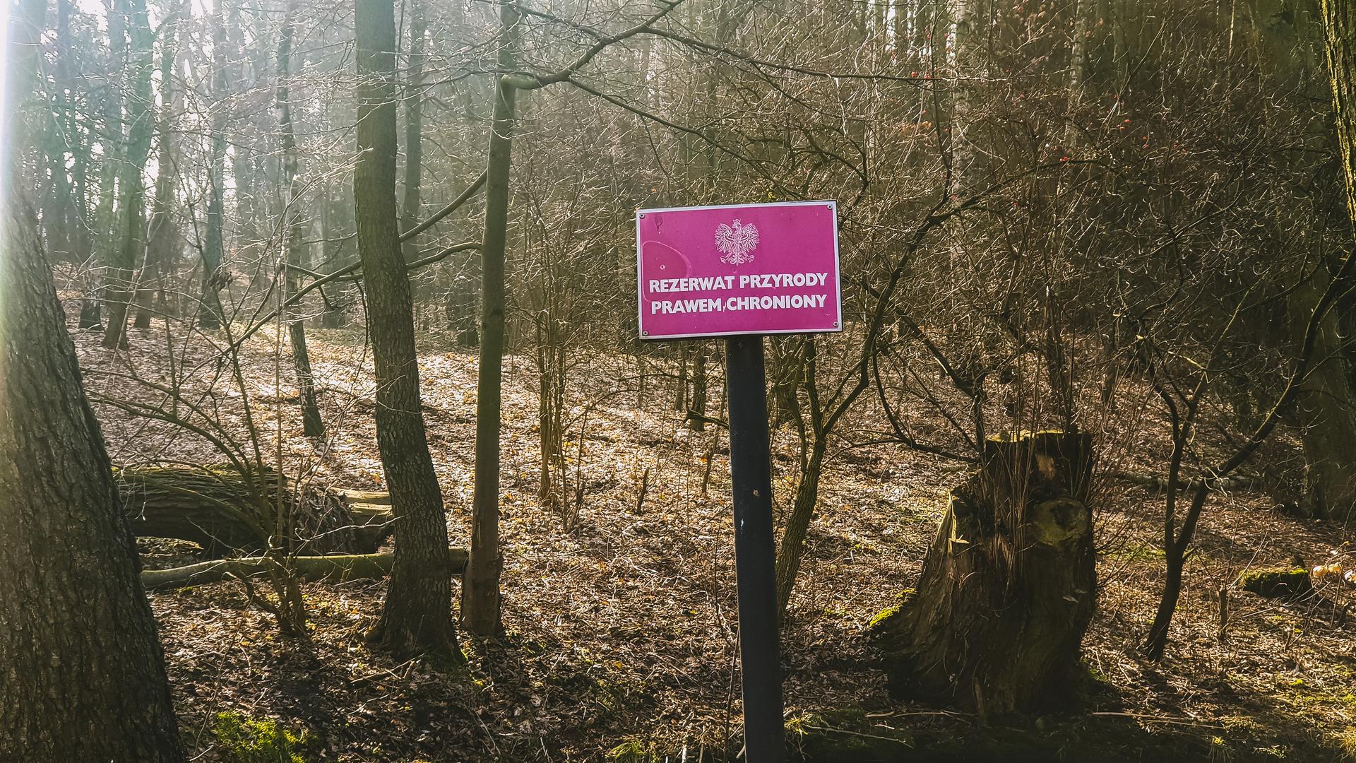 Wycieczka rowerowa do Spały i Inowłodza - Tomaszów Mazowiecki, rezerwat Niebieskie Źródła